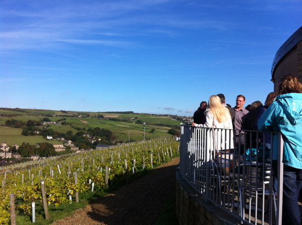 Holmfirth Vineyard tour